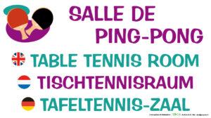 EBCD Signalétique Camping - JE008 Salle de ping-pong 450x250