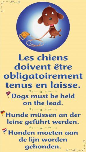 Les chiens doivent absolument être tenus en laisse