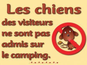 Les chiens des visiteurs ne sont pas admis dans le camping