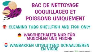 EBCD Signalétique Camping - SE021 bacs coquillage 450 x 250